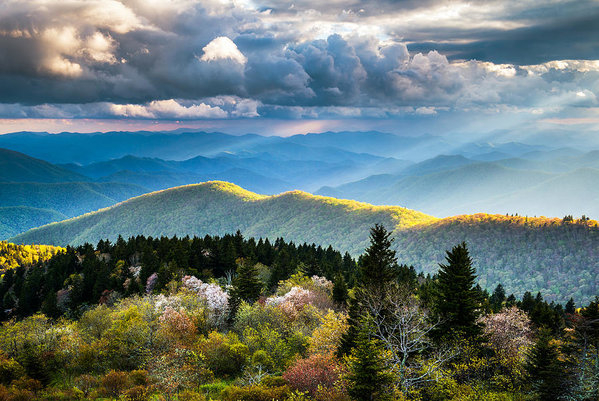 Dave Allen - Great Smoky Mountains Nat... Print