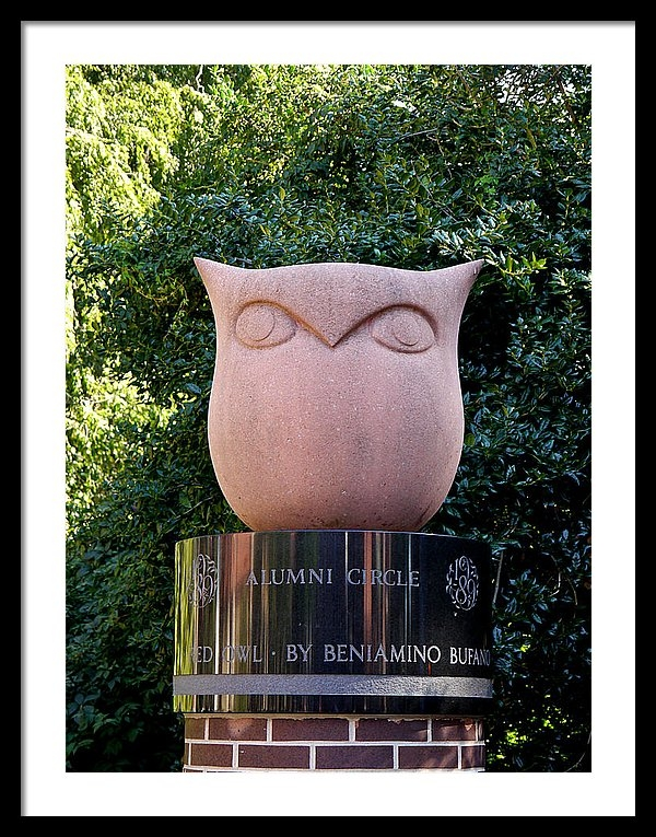 Richard Reeve - Red Owl at Temple Print