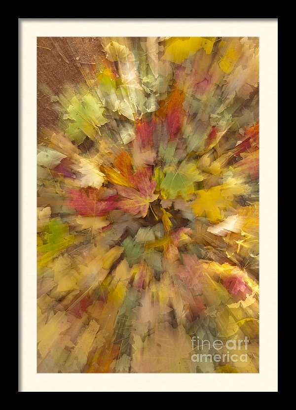 Sandra Bronstein - Fall Leaves Abstract Print