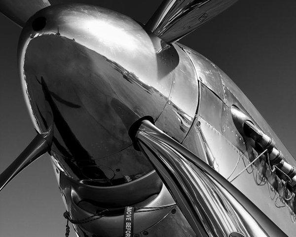 John Hamlon - P-51 Mustang Print