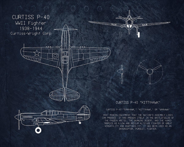 Sara Harris - Curtiss P-40 Warhawk blue... Print