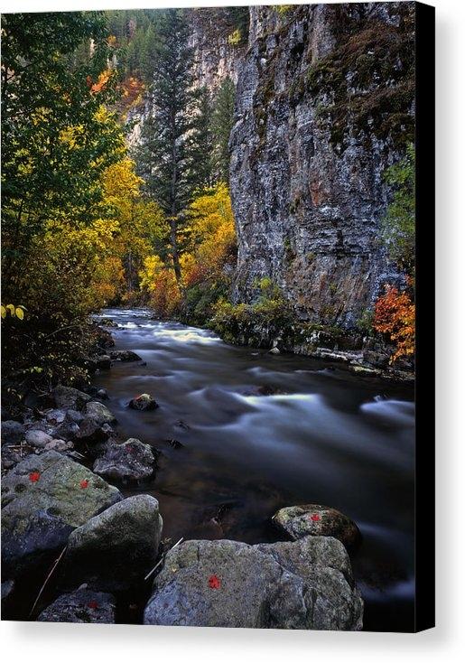 Mike Norton - Logan River Print