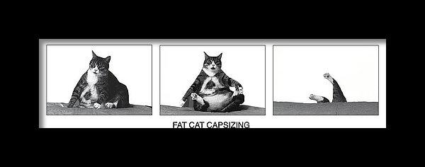 Richard Watherwax - Fat Cat Capsizing Print