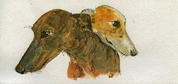 Juan  Bosco - Two greyhounds Print