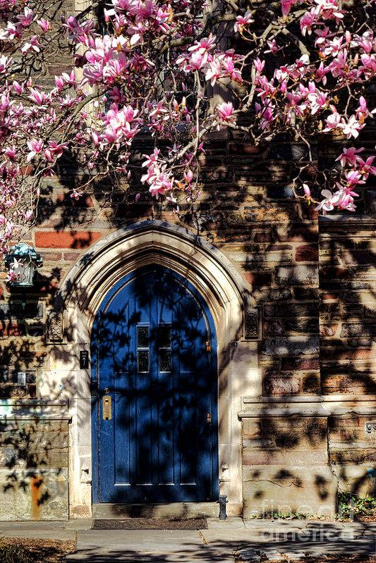 Olivier Le Queinec - Princeton University Door... Print