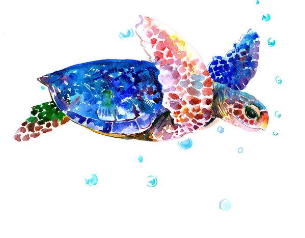 Suren Nersisyan - Blue Sea Turtle Print