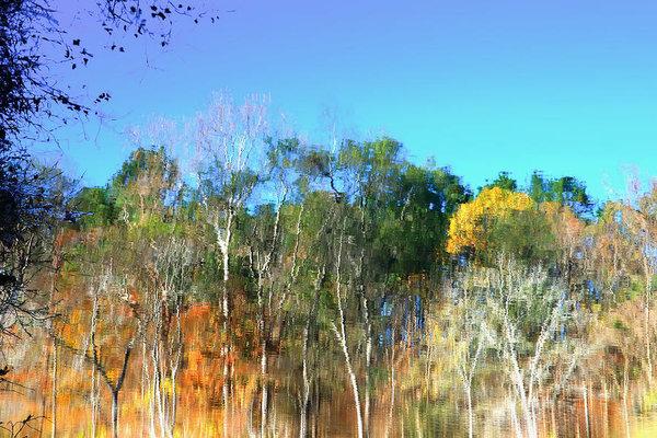 Inho Kang - Reflection Of River Print