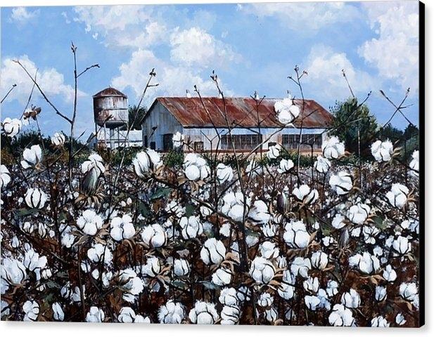 Cynara Shelton - White Harvest Print