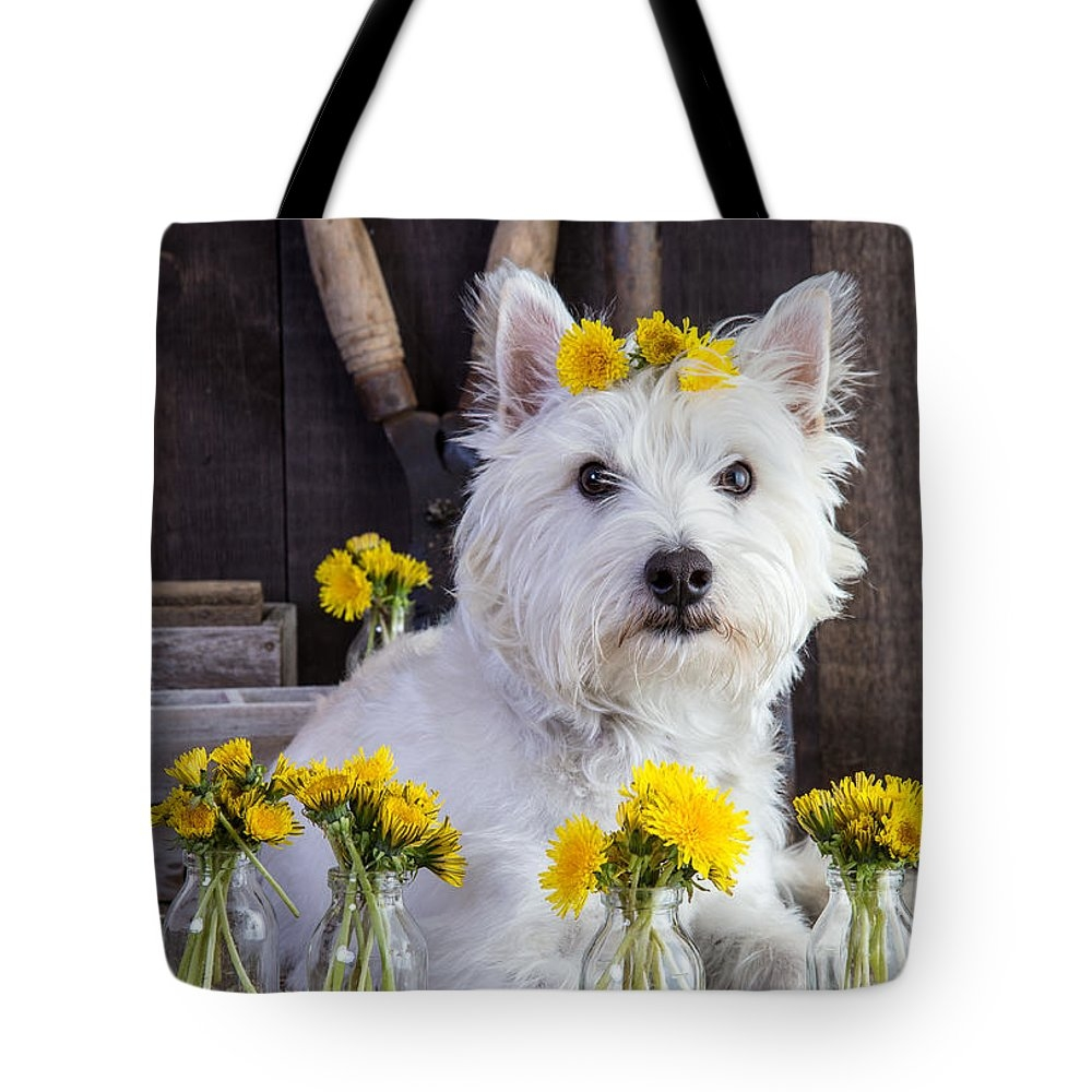 design your own custom tote bags print on demand tote bags