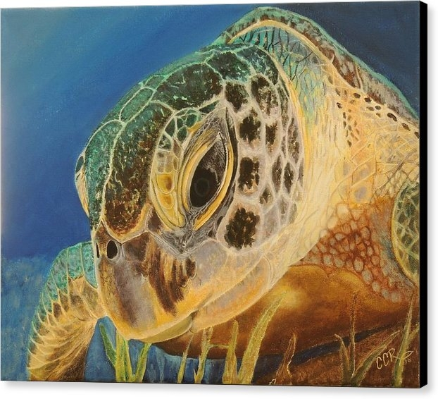 Connie Campbell Rosenthal - Green Turtle