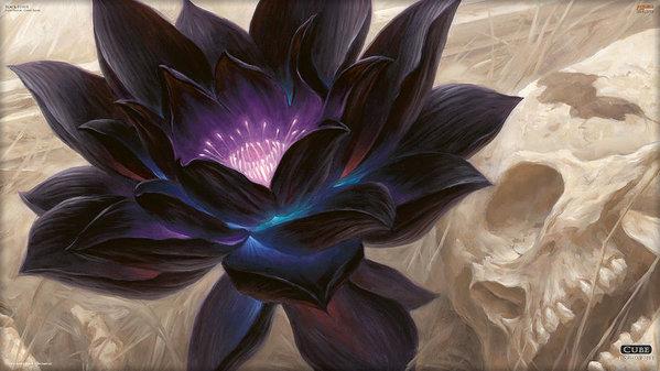Fran Sotu - Magic The Gathering