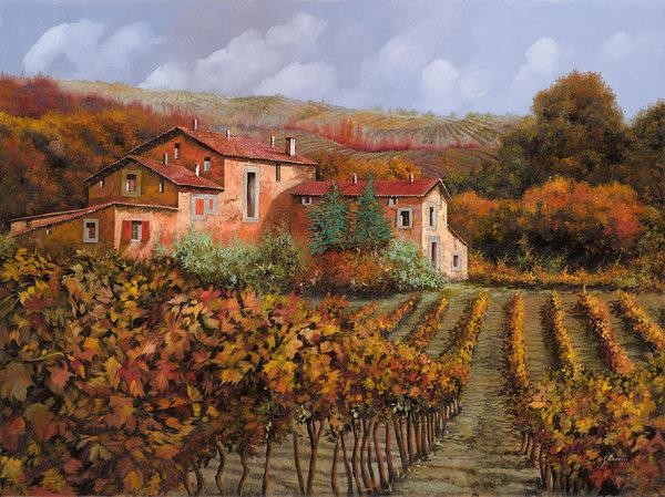 Guido Borelli - tra le vigne a Montalcino