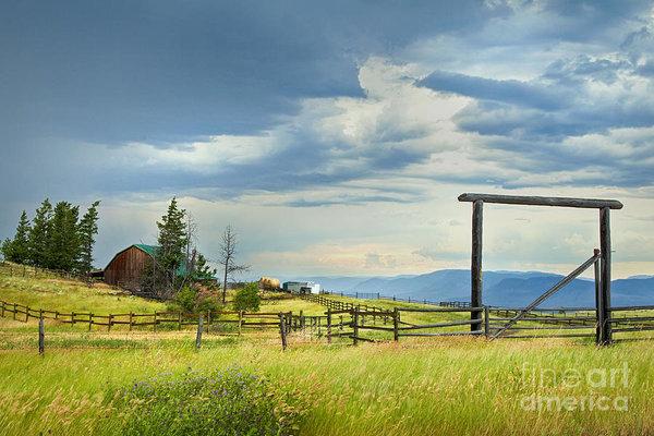 Theresa Tahara - High Country Farm