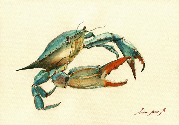 Juan  Bosco - Blue Crab painting