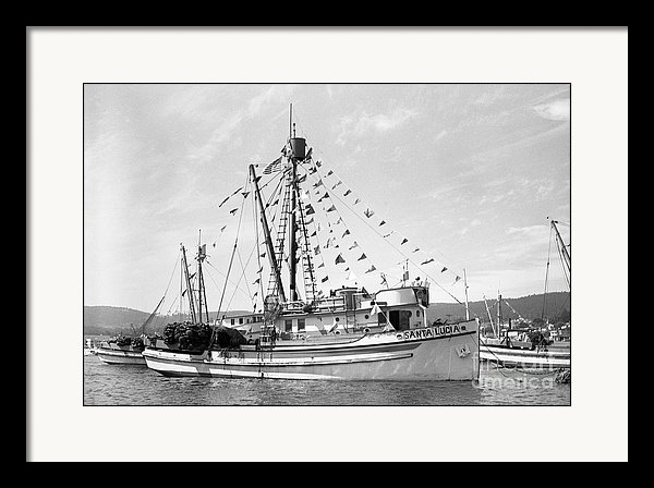 California Views Mr Pat Hathaway Archives - purse seiner Santa Lucia in Monterey Harbor