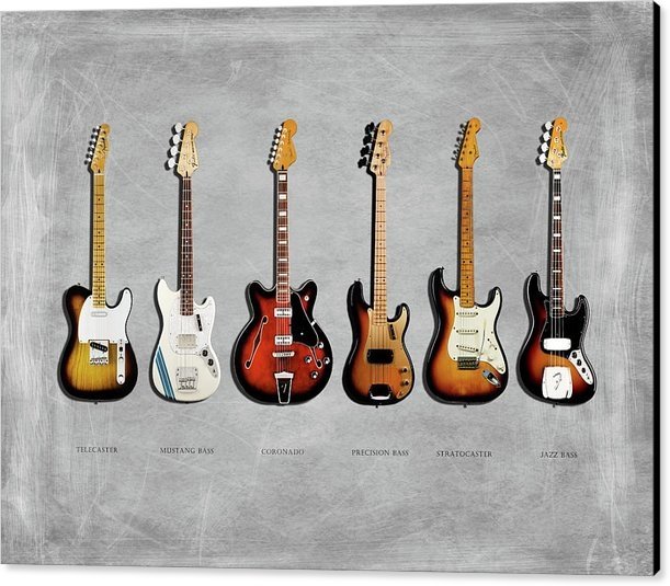 Mark Rogan - Fender Guitar Collection