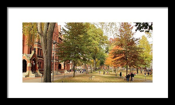 Ellen Ryan - Harvard Yard in Autumn