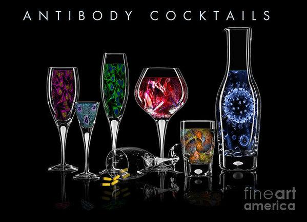 Megan Dirsa-DuBois - Antibody Cocktails