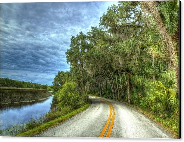 Andrew Armstrong  -  Mad Lab Images - Ormond Scenic Loop Left