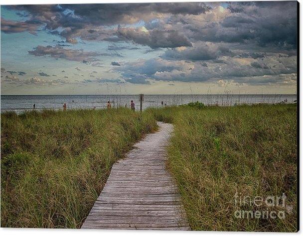 Deborah Benoit - Walkway To The Beach