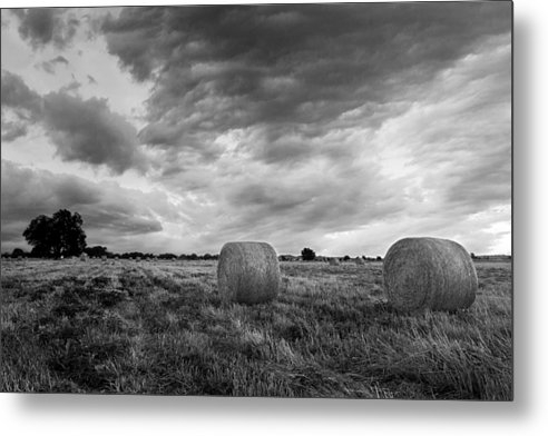 Paul Huchton - Field of Hay Black and White 2