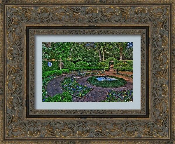 Alex Owen - Maclay's Garden