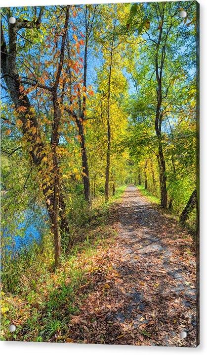 John M Bailey - Path through Fall