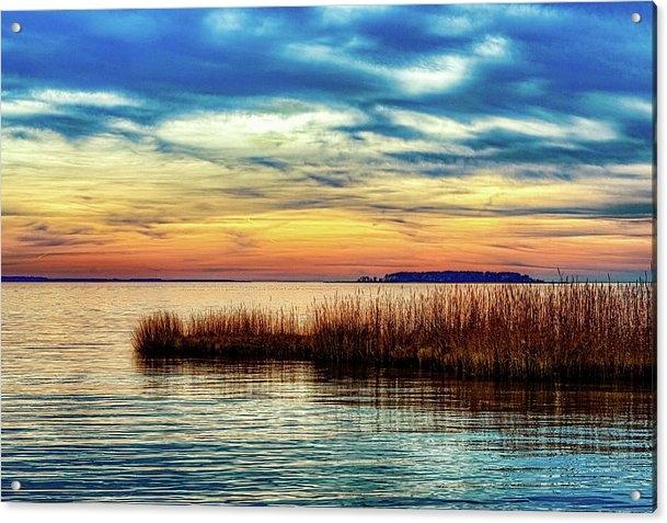 Fran Goucher - Saw Grass Sunset