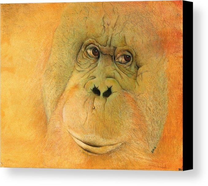 Ann Hamilton - Orangutan