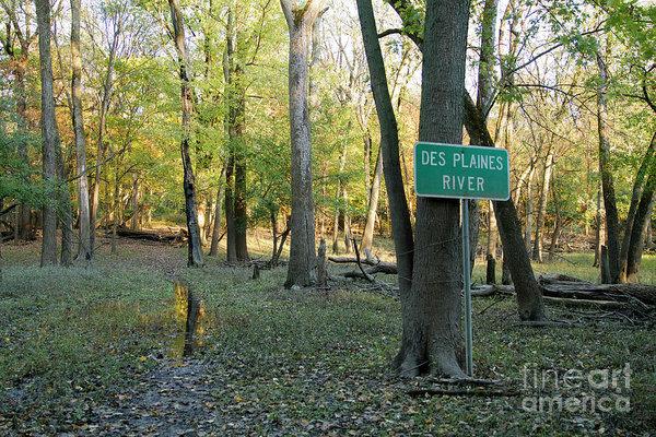 Sara Schroeder - Des Plaines River Sign in Woods