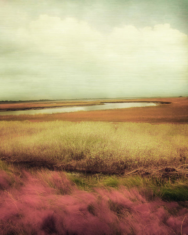 Amy Tyler - Wide Open Spaces