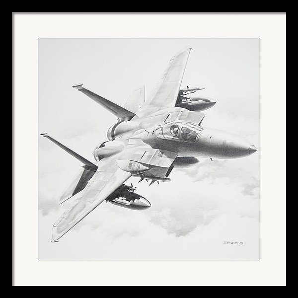 James Baldwin Aviation Art - Bird of Prey