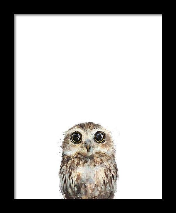 Amy Hamilton - Little Owl