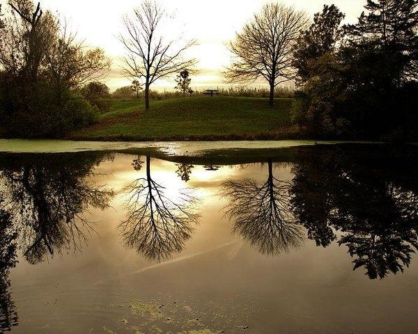 Justin Langford - Reflections of fall