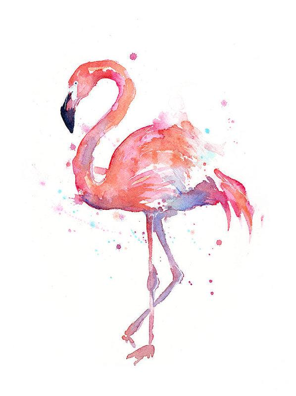 Olga Shvartsur - Flamingo Watercolor
