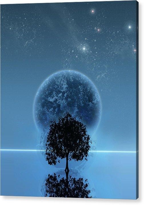 Andreas  Leonidou - Tree Of Life