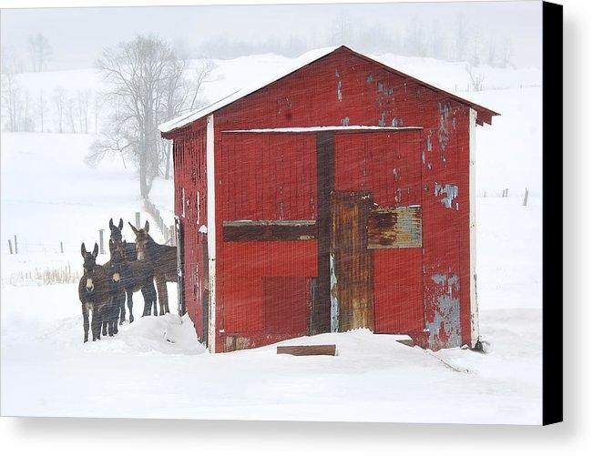 Susan Stanton - Muletide Cheer - On the Farm
