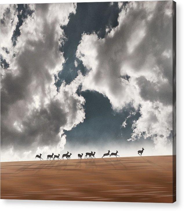 Moira Risen - October sky