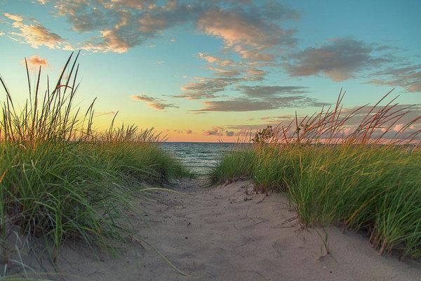 Jackie Novak - Dune Path at Sunset