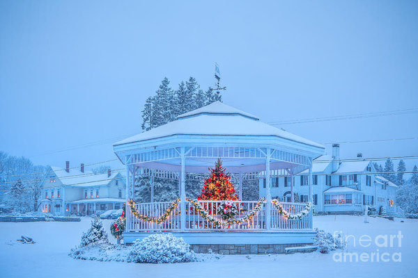 Susan Cole Kelly - Snowy Christmas Bandstand