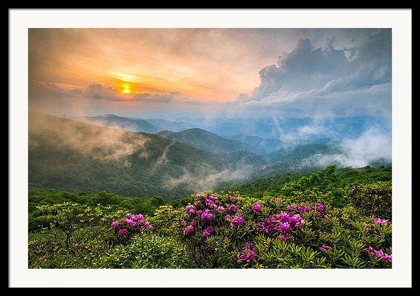 Dave Allen - North Carolina Blue Ridge Parkway Spring Appalachian Mountains NC