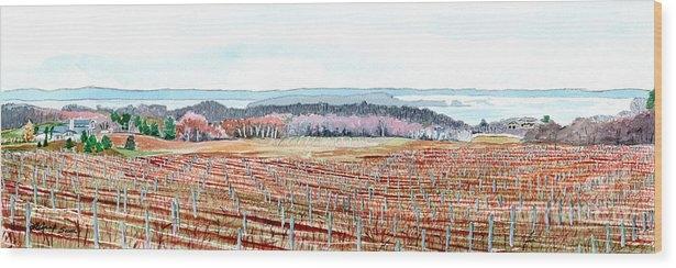 LeAnne Sowa - Vineyards of Mission Peninsula