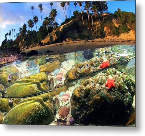 California Coastal Commission - Winter's Afternoon by Dale Kobetich