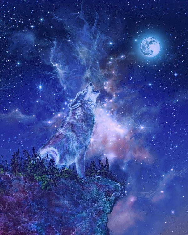 Bekim Art - Wolf And Sky Blue 2