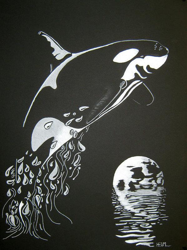 Mayhem Mediums - Orca Sillhouette