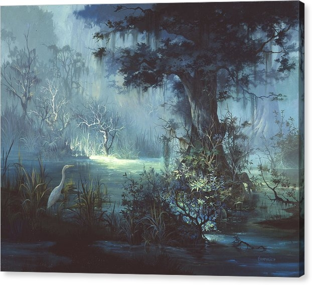 Michael Humphries - Egret in the Shadows