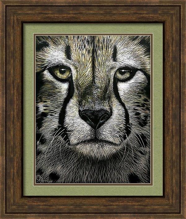 Chris Perry - Cheetah