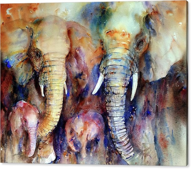 Arti Chauhan - Elephant Family