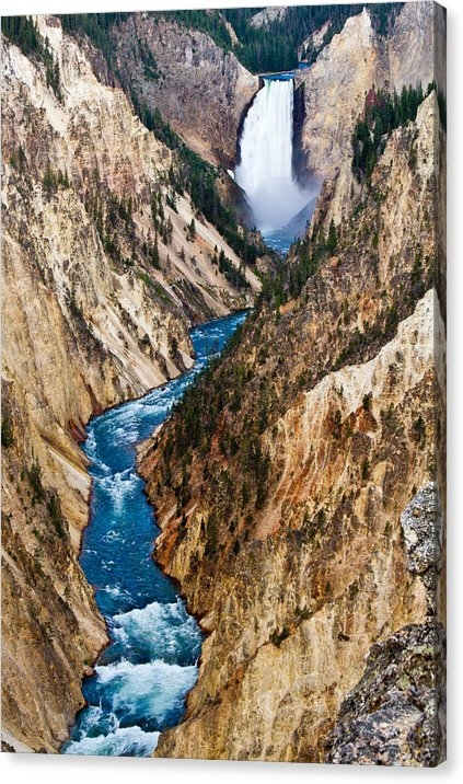 Bill Gallagher - Grand Canyon of Yellowstone