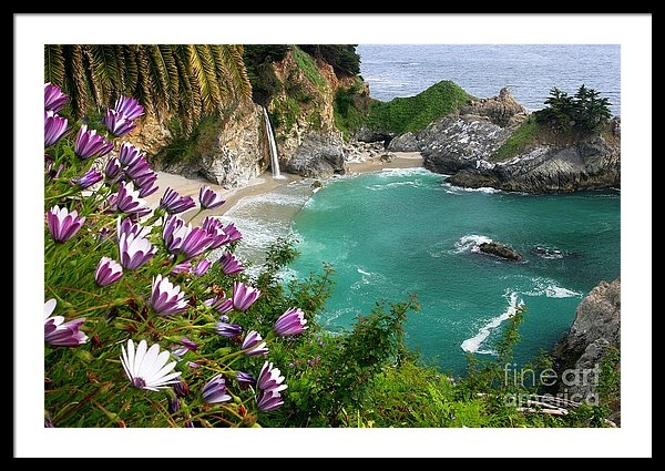 Buck Forester - McWay Falls